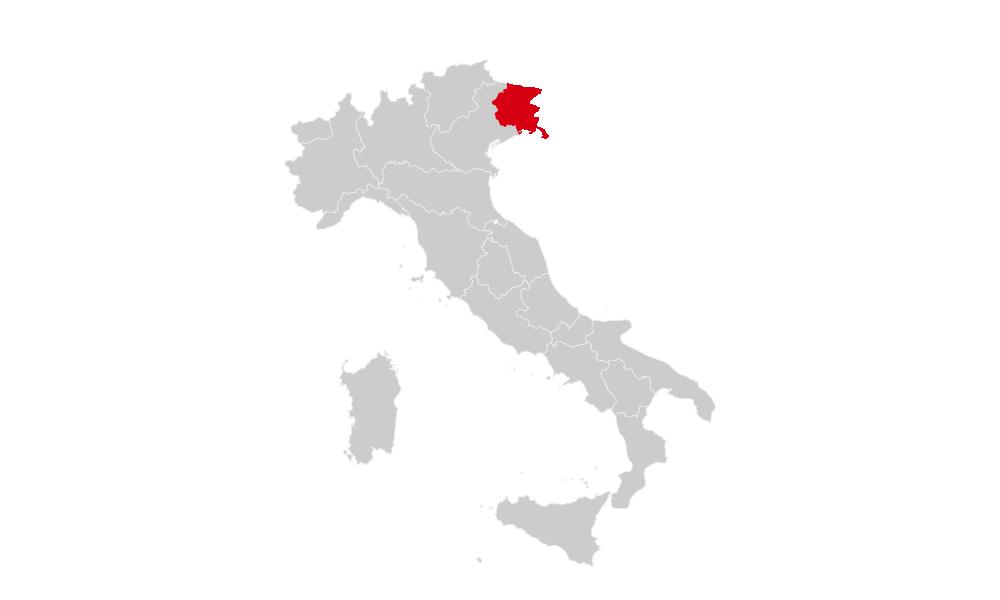 PD RegionaliFriuli Venezia Giulia